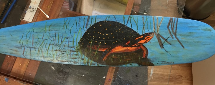 Spotted Turtle on Paddle_ Wendie Donabie
